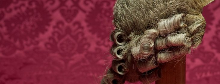 image of wig on wig-stand against red cloth background